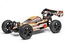 DESERTWOLF 1/8 4WD BUGGY
